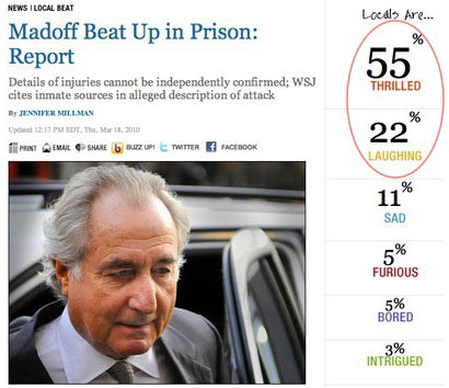 Bernie Madoff Survey Results