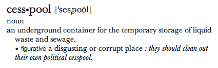 Cesspool definition