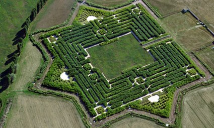 Soon to be the world's largest maze.