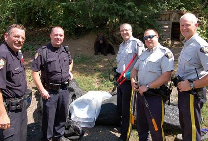 Officers and a Bear