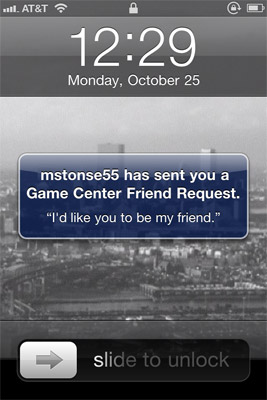 Game Center Friend Request Screenshot