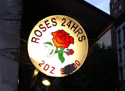 Roses 24HRS