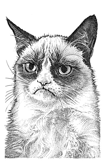 Grumpy Cat's Stipple Portrait