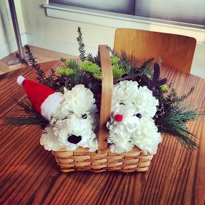 Santa Paws and his best reindeer
