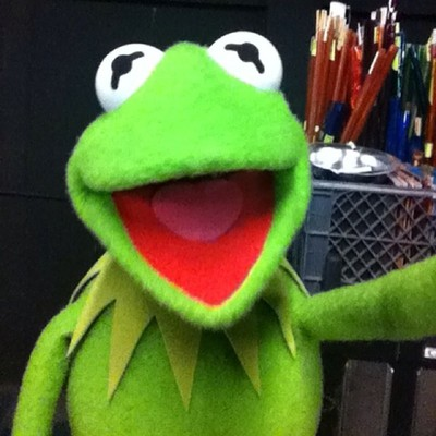 Kermit the Selfie