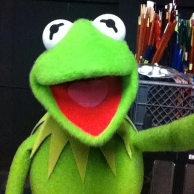 Kermit the Selfie