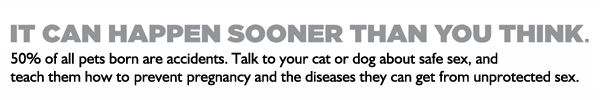 It can happen sooner than you think. 50% of all pets born are accidents. Talk to your cat or dog about safe sex, and teach them how to prevent pregnancy and the diseases they can get from unprotected sex. Prevent More. Fix at month four.