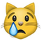 Crying Cat Face emoji
