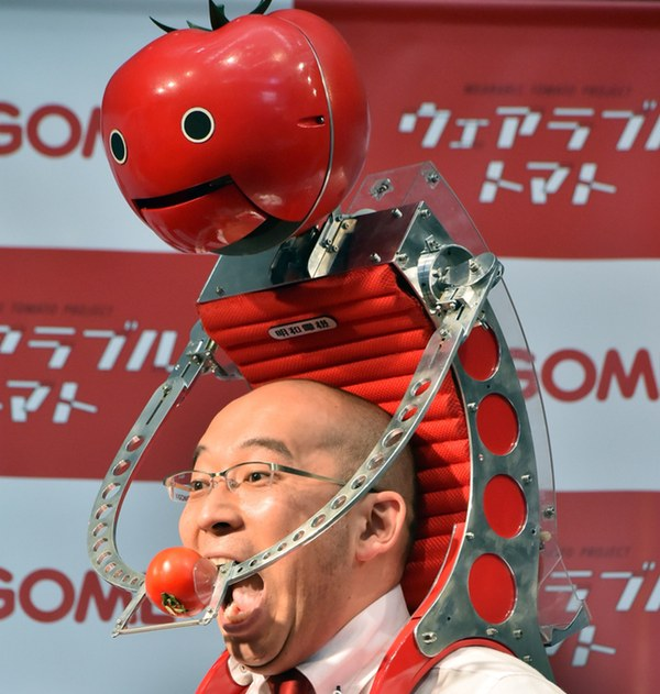 The Tomatan in action
