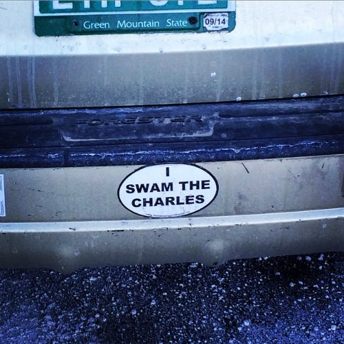 'I Swam The Charles' Bumper Sticker