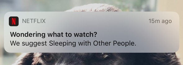 """A Netflix notification reading """"Wondering what to watch? We suggest sleeping with other people""""."""