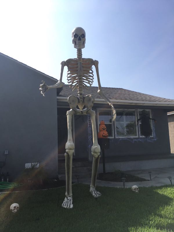 A 12-foot-tall skeleton in a yard.